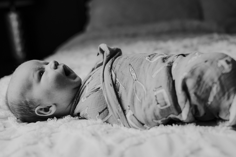 newborn session , clarke county, va
